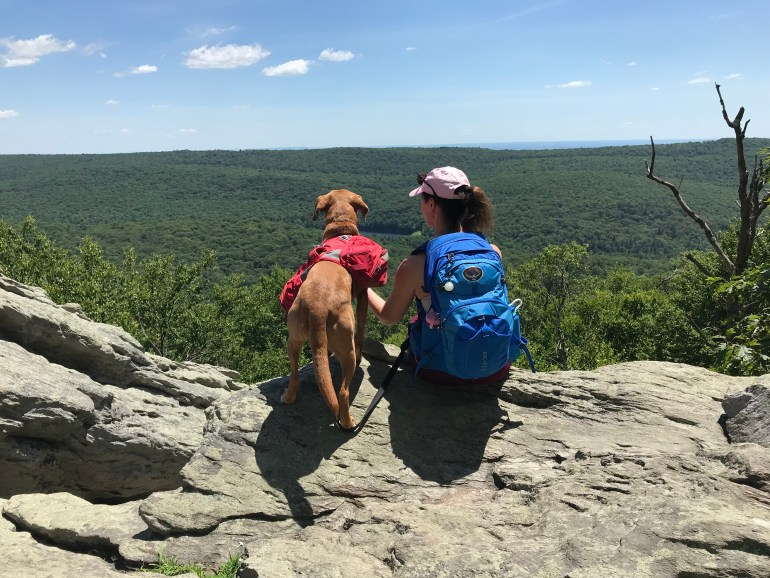 A woman and dog, both wearing back packs, sitting side by side on a large rock and viewing the valley of trees below