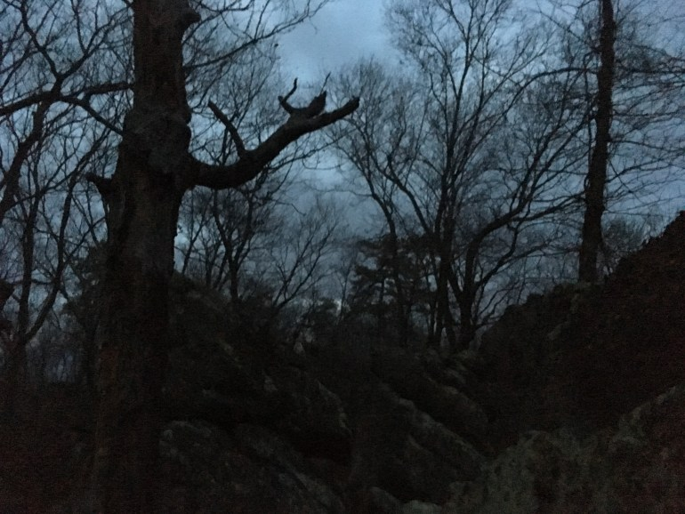 Trees and large boulders are silhouetted against a grey darkening sky