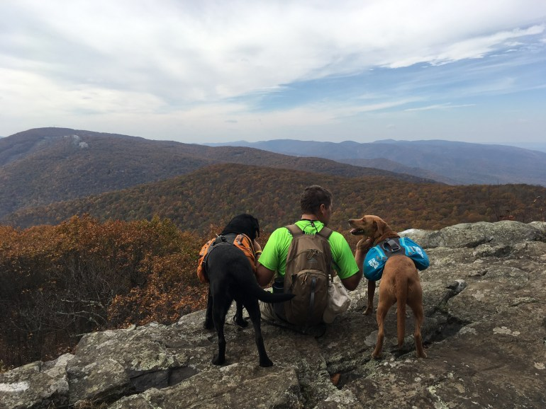 A man and his 2 backpacking dogs sitting on a rocky ridge looking at the fall colors of surrounding mountains
