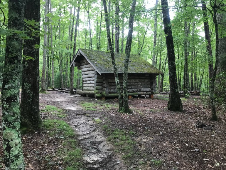 Log cabin shelter in the woods