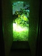 Kye Wilson Monolcular View film