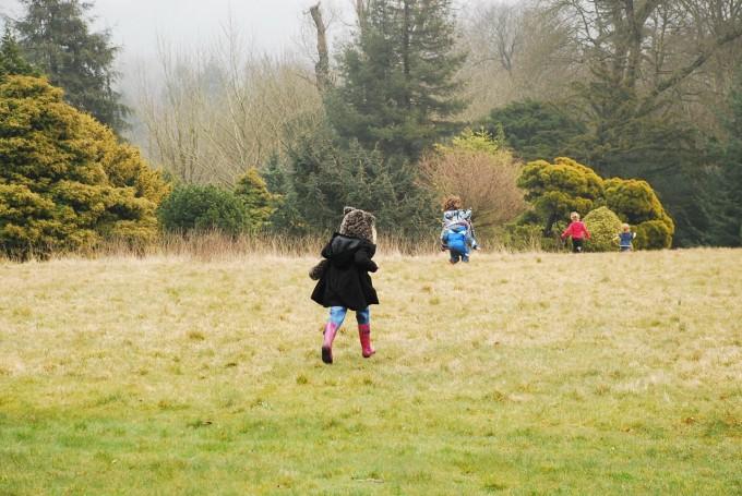 Running Wild at Nymans National Trust