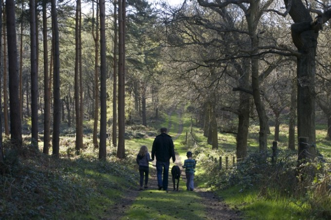 Sherwood Hideaway: Perfect Family Break in Sherwood Forest, Nottingham