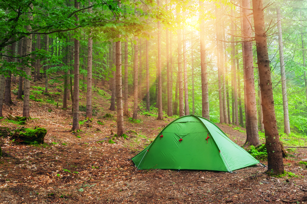 Wild Camping: a Survival Guide for Families