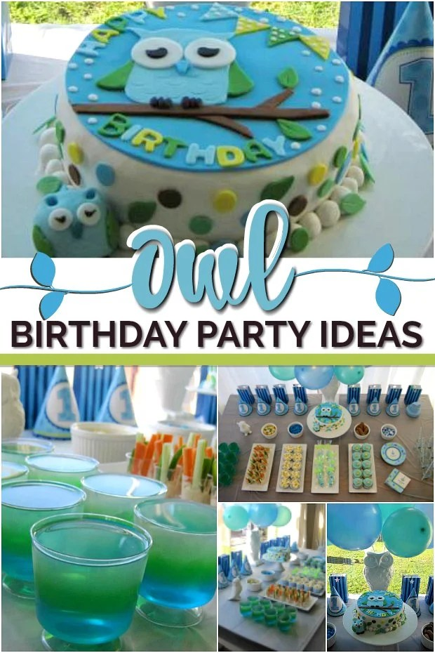 Owl themed Birthday Party Ideas