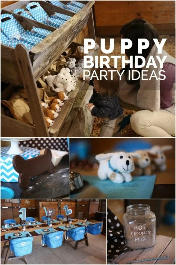 7 BOYS PUPPY BIRTHDAY PARTY IDEAS