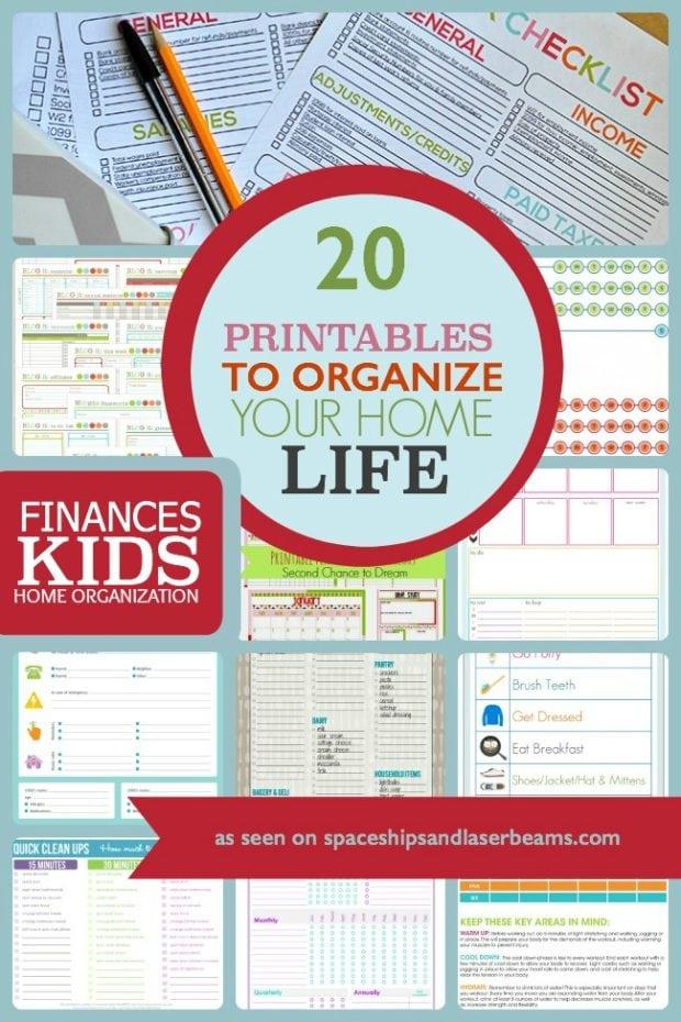 Free Binder Family Budget Printables