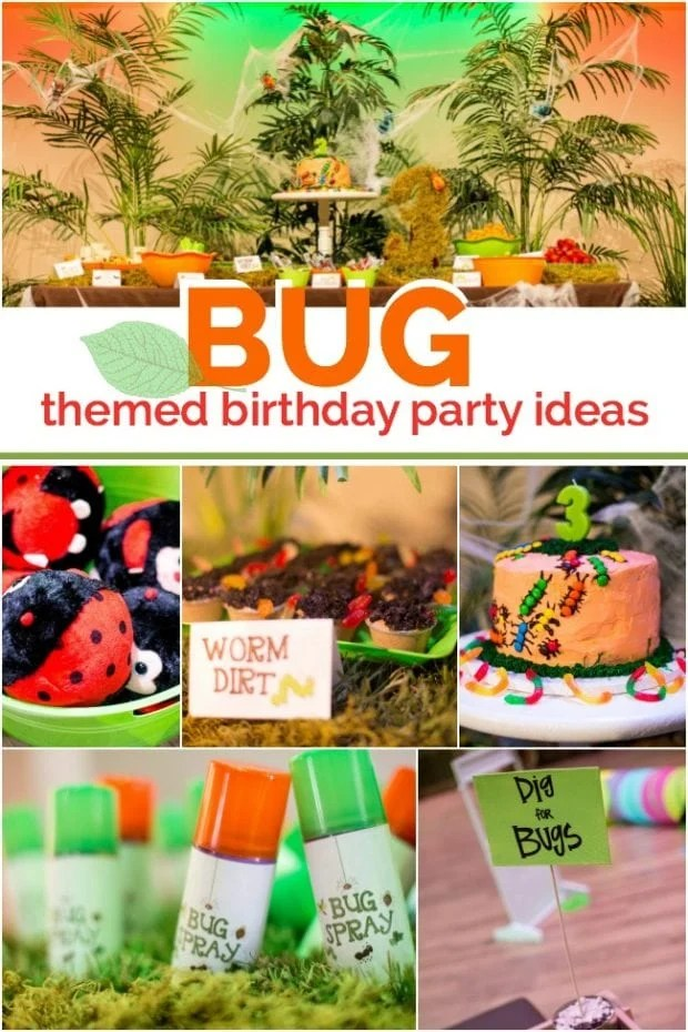 bug themed 3rd birthday party