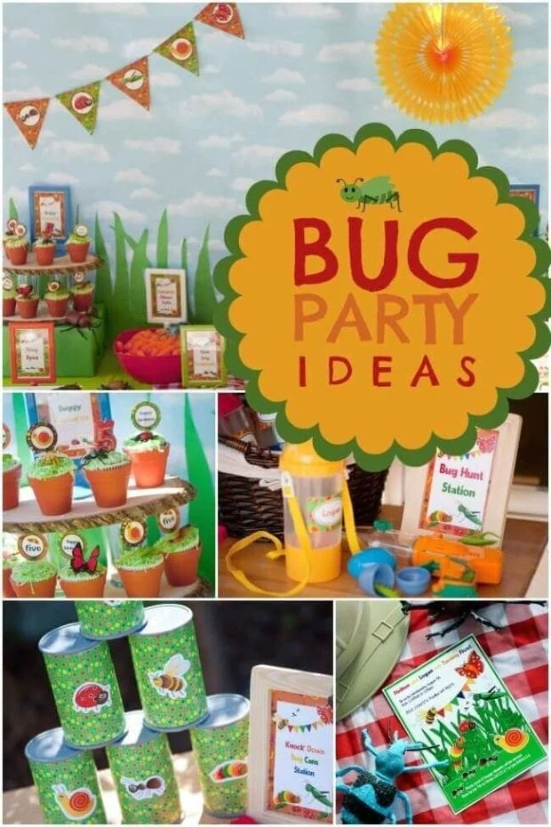 A Colorful Boy's Bug Birthday Party