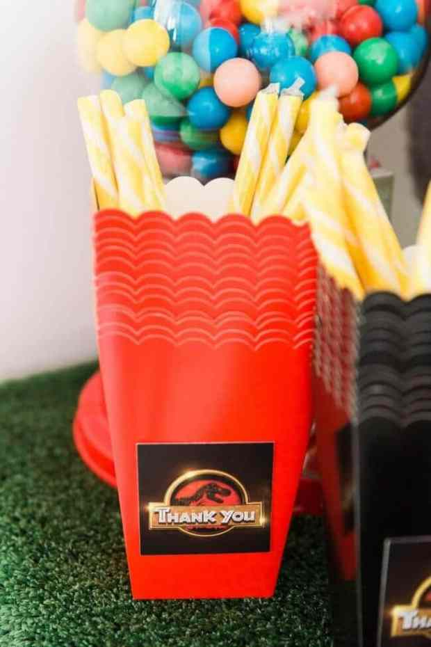 Jurassic Park Birthday Party Favor Boxes