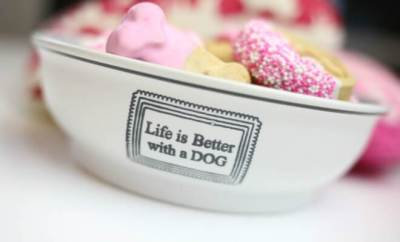 Life is Better with a Dog Dish