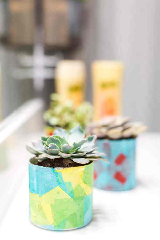 Easy DIY Planters for Succulents