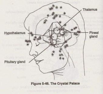 pineal-crystal-palace
