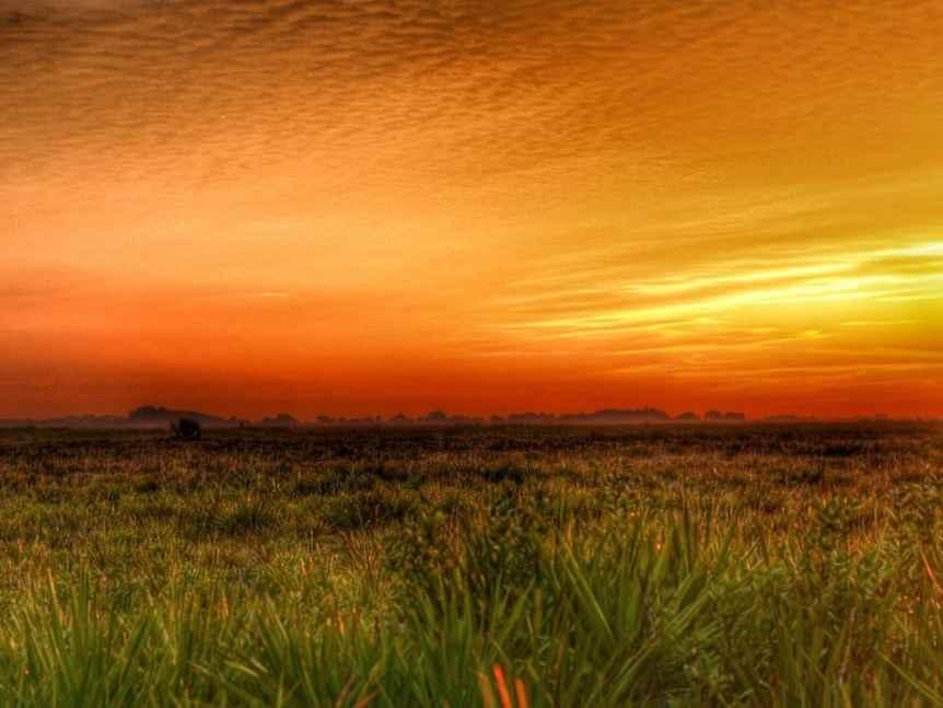 Stargazing in Orlando - Kissimmee Prairie Preserve State Park - RomansTenNine via Flickr