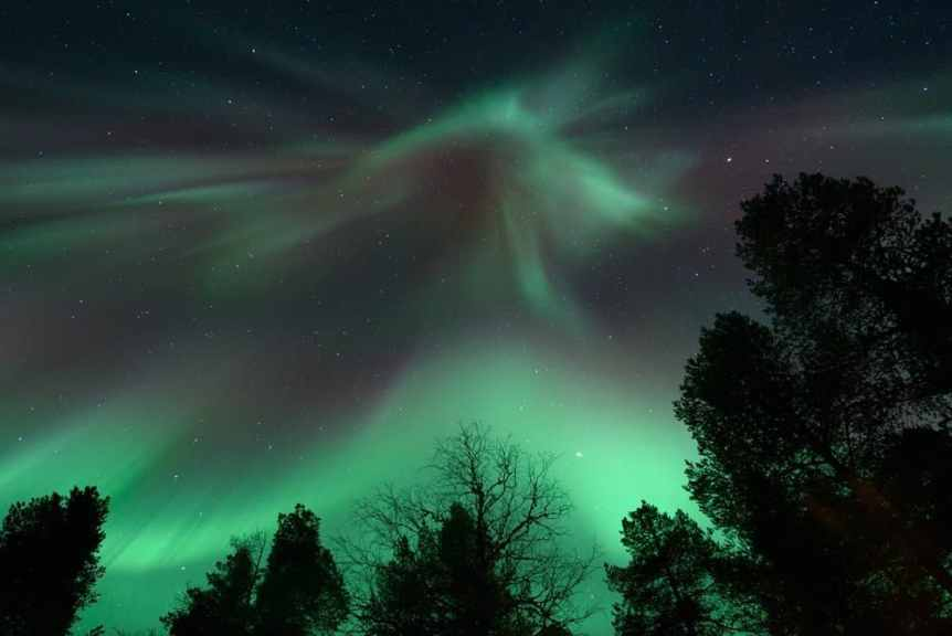 Northern Lights in Finalnd - Nellim - Angeline You via Flickr
