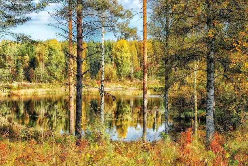 Northern Lights in Finland - Autumn