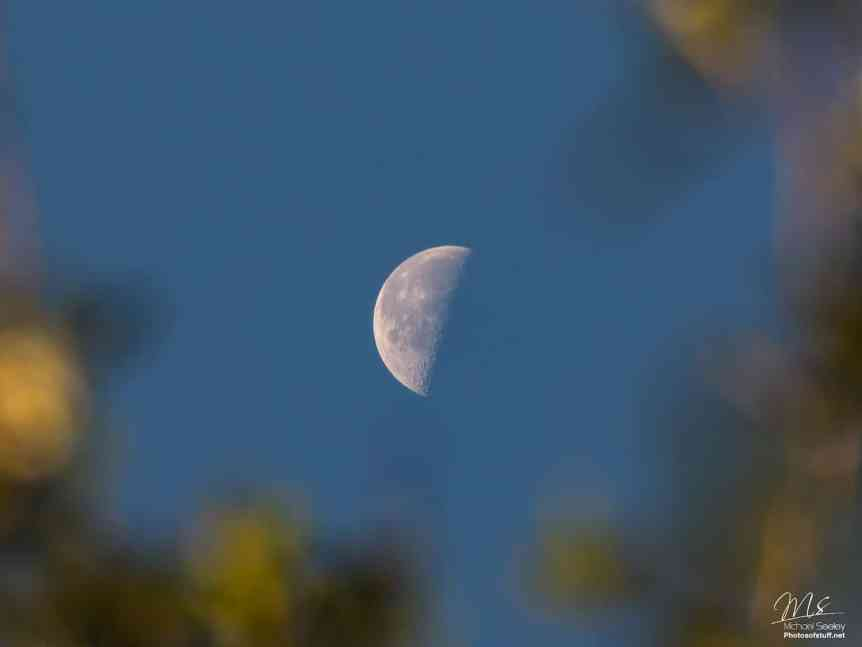 Night Sky October - Last Quarter Moon - Michael Seeley via Flickr