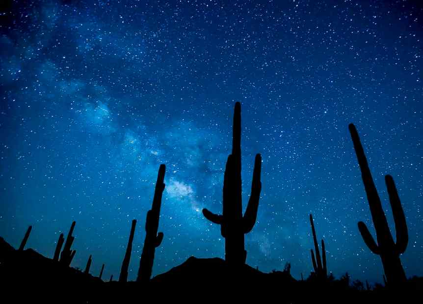 Stargazing in Tucson - Saguaro National Park - Bob Wick for BLM via Flickr