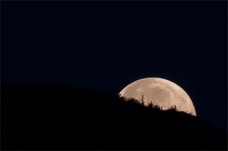 Stargazing in Tucson - Stacy Egan via Flickr