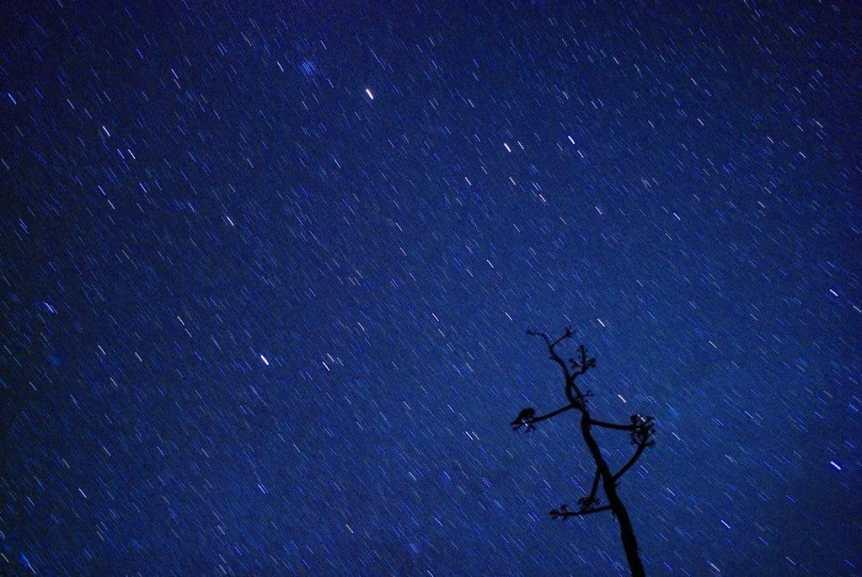 Stargazing in Houston - Adam Baker via Flickr