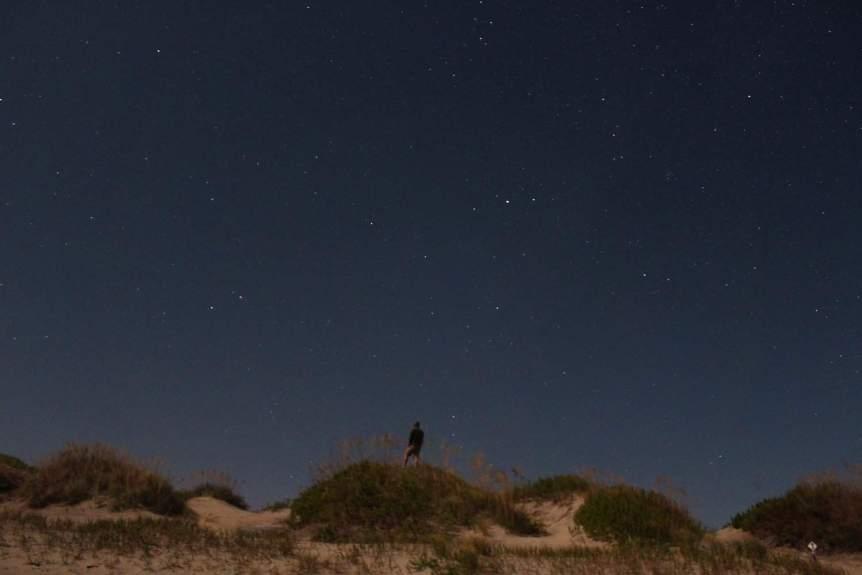Urban Stargazing - Will Fisher via Flickr