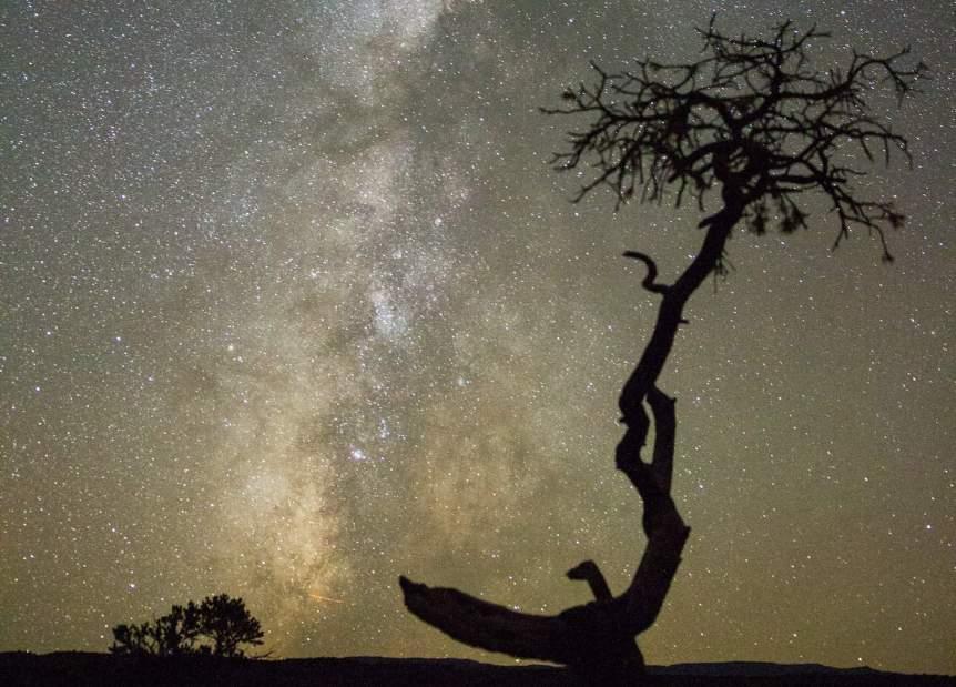 Best National Parks for Stargazing - Capitol Reef - Sylvain L. via Flickr