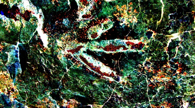Dinosaur-Tracks-Subsurface-Image-Recovered-by-ERV