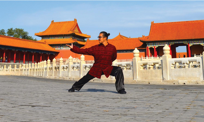 A Life of TCM, Wushu and ART
