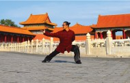 A Life of TCM, Wushu and ART