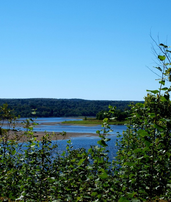 Saint John River – along the trail in Douglas, near Fredericton.