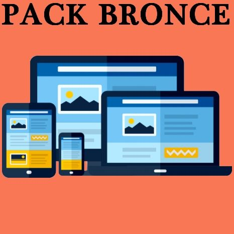Pagina Web Bronce