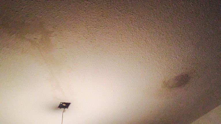 Reparaties spackplafond met gips