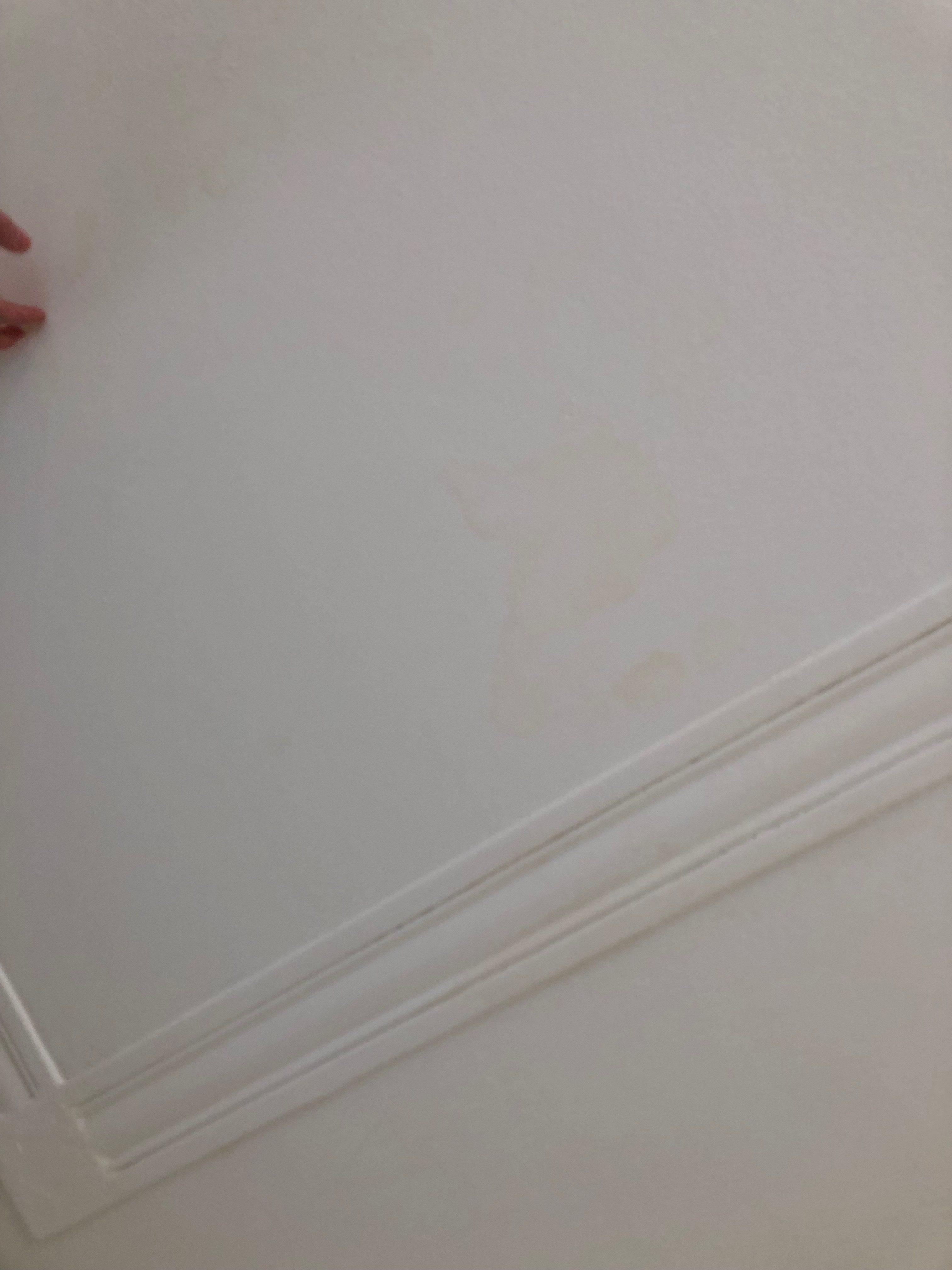 Beschadiging op het plafond - loszittende delen + waterschade