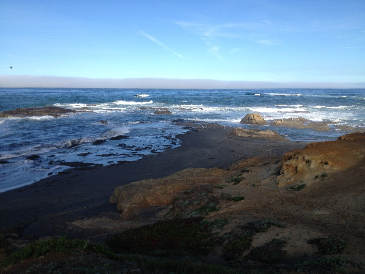 View from the haul road (Ft. Bragg, CA) Northcoast
