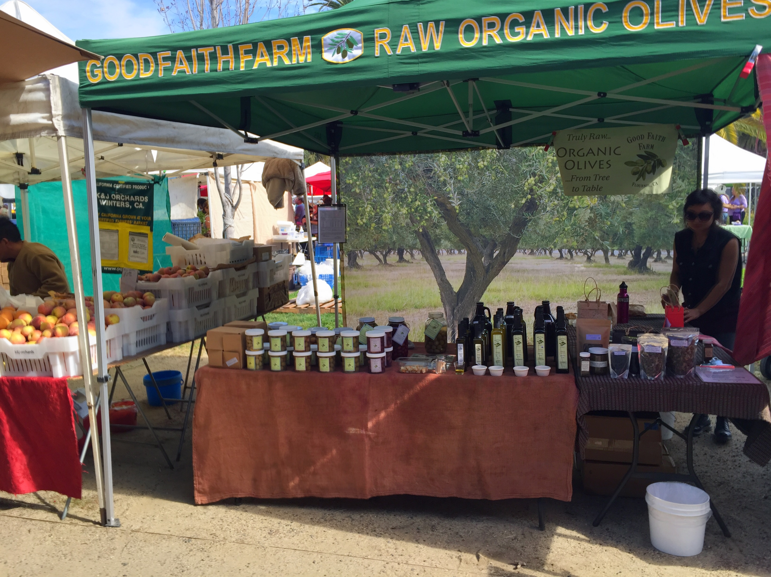 Organic Olives and Olive Oil