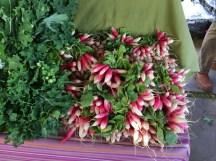 Spring French Radishes