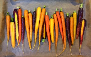 Tricolored carrots