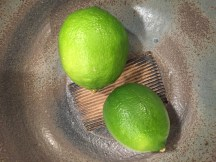 The first limes from my container tree in Fort Bragg