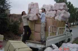 Emergency Response - Earthquake Relief (2)