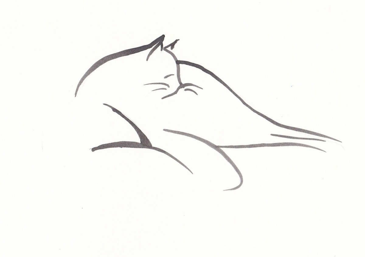 drawing of a reclining cat