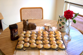 Anisette Cookies!