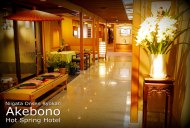 Akebono Hot Springs Lobby and Rest Area