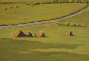 Hay Bales in Highland County