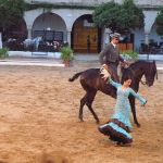 Equestrian Show At The Cordoba Royal Stables Made For Spain And Portugal