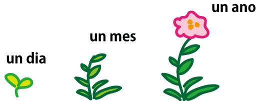 スペイン語で「1日」「1ヵ月」「1年」