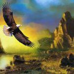 vBlog; Las Águilas de la Tierra Media