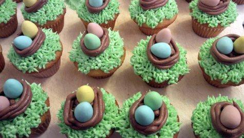 nest cupcakes 2
