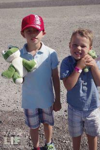 Stuffies at Safari Niagara