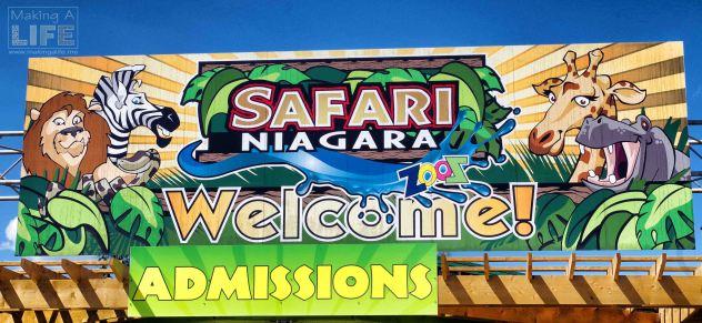 Safari Niagara