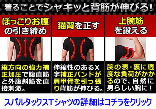 スパルタックス半袖Tシャツ紹介
